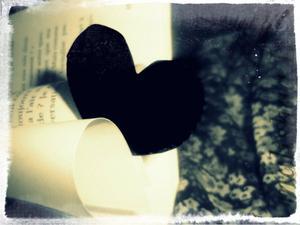 Petit coeur qui a trouvé reffuge. (lL)
