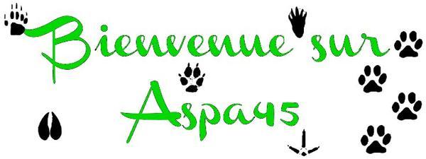ASPA45 Présentation