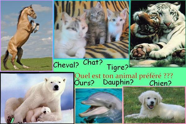 Quel est ton animal préféré???