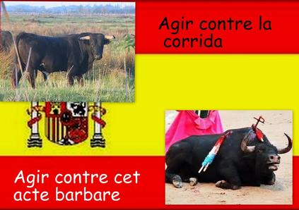 Stop à la corrida :@
