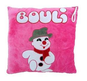 Mes recherches Bouli le bonhomme de neige 2