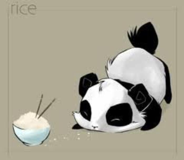 La légende du panda.