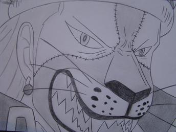 Manga : Zorro et Chopper =)