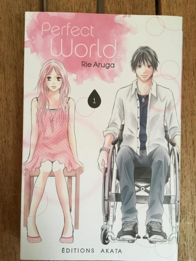Perfect World tome 1