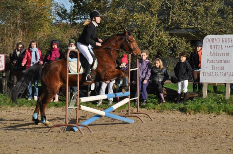 Rafale & Charlène. Concours Centre equestre du Tilleul. 10/11/2013. ♥