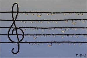Musique ♥ Amitié ♥ Amour ♥