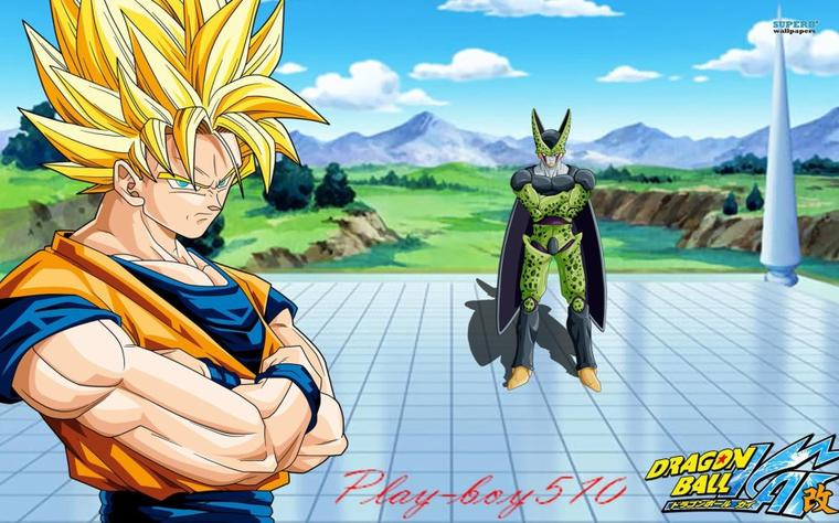 Sangoku Vs Cell