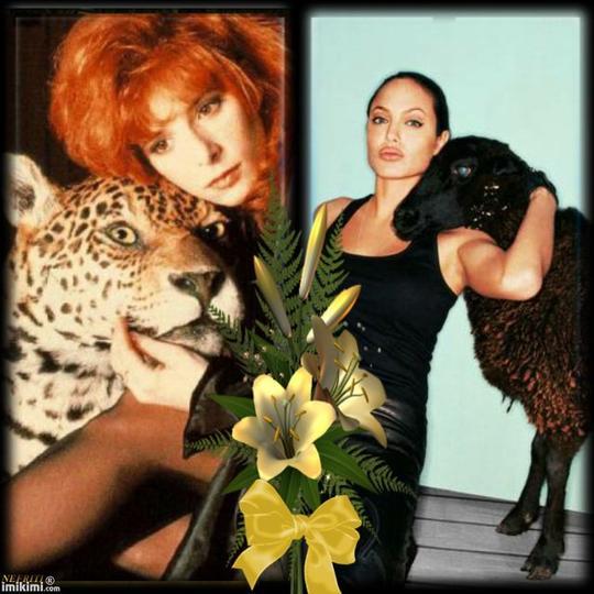 L'amour des animaux.