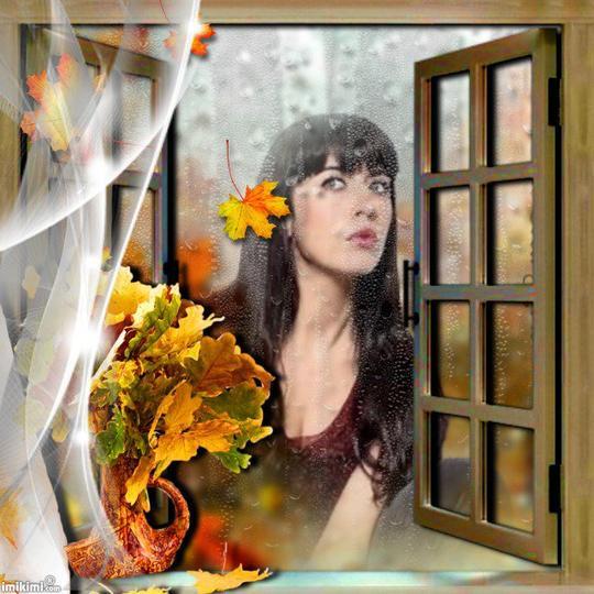 Contemplation de l'automne.