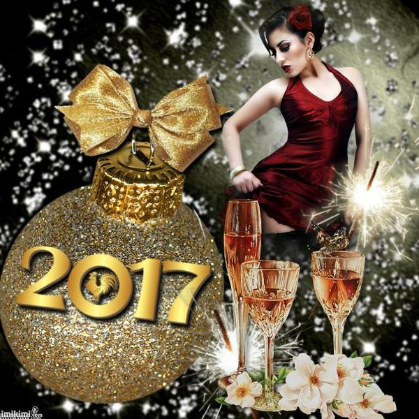 Bonne année 2017!