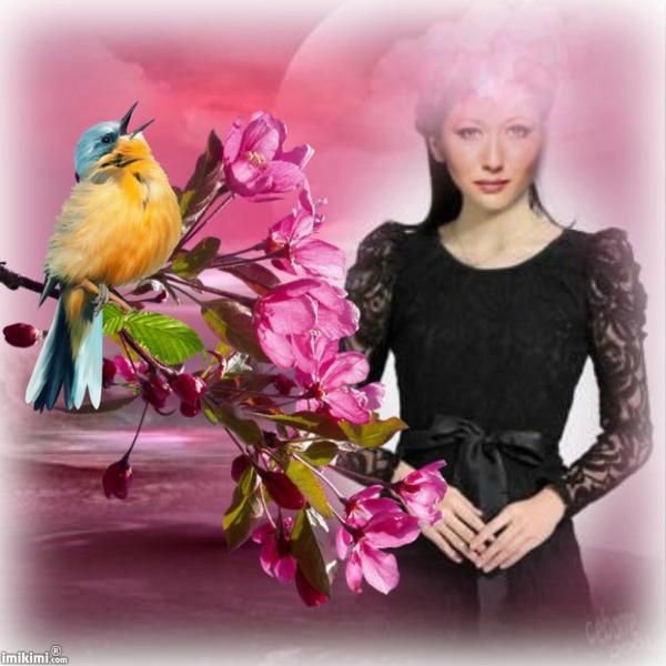 Chant de l'oiseau au printemps.
