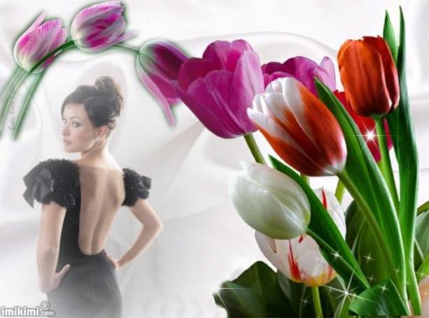 Belles tulipes.