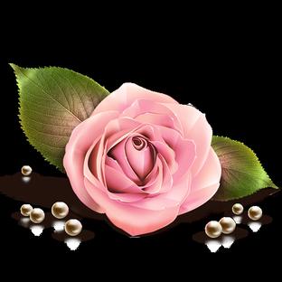 Rose sexy.