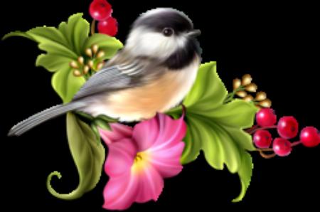Les oiseaux chantent le printemps.