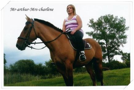 Etre heureux à cheval , c'est être entre ciel et terre , à une hauteur qui n'existe pas !