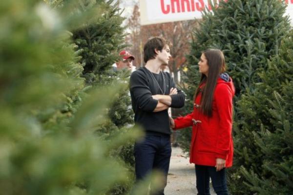 Ian et Nina achetant leur sapin