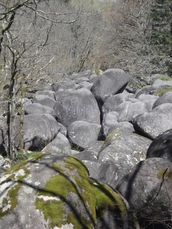 Séjour en Midi-Pyrénées