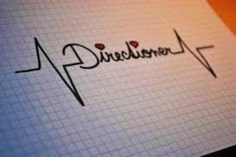 I'm a directioner :3