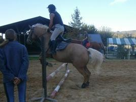 Le bonheur est sur le dos d'un cheval; entre ciel & Terre.
