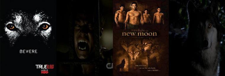 [Zoom sur...] Les séries de vampires : Les Loups-Garous (part.6)