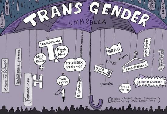 La transsexualité (transidentité) dans les séries