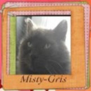 Carte d'identité : Misty-Gris      :D