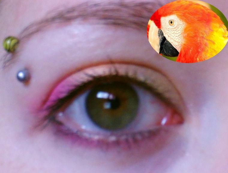 Tuto : Eyes parrot