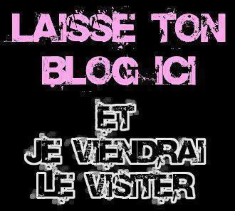 Laiisse ton Blog  ET je Viendrai le VIsiter :)