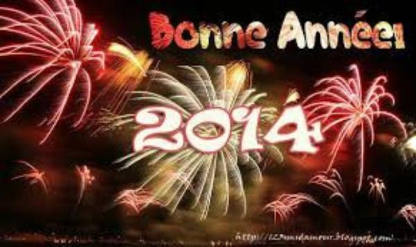 Bilan de mon année 2013 !!!