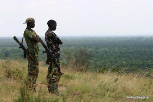 Nord-Kivu: 9 personnes tuées dans une attaque des ADF à Oicha