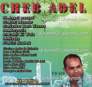 ADEL-AVM-30.12.2011