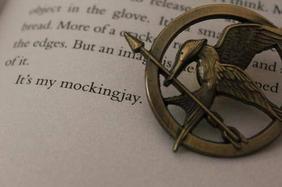 Hunger Games, plus qu'un livre. ♥