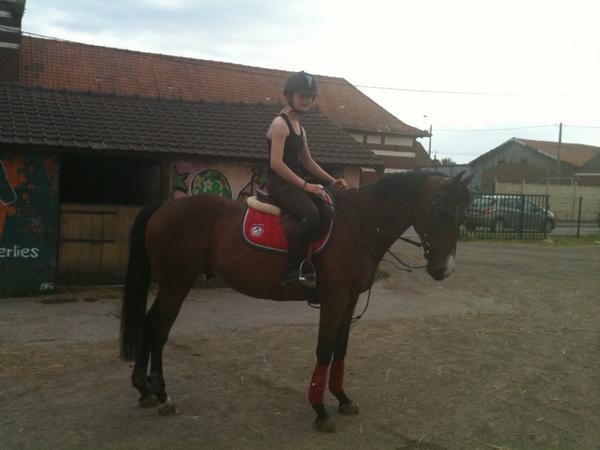 Mon cheval & Moi .. ♥