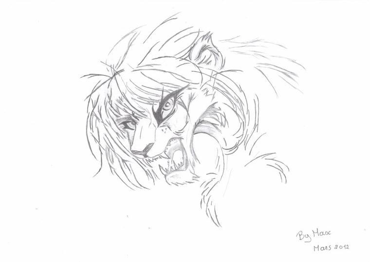 un lion pas très happy ><