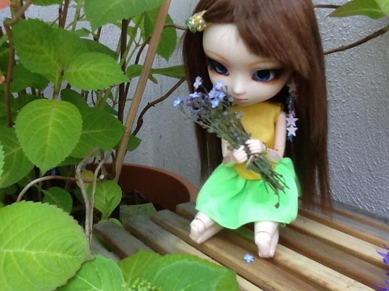 Séance photo n°12 : Bouquet de senteurs ! (partie 1)