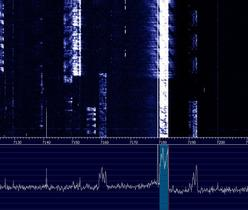 Emetteur-récepteur SDR ANAN8000 - 200 Watts en émission