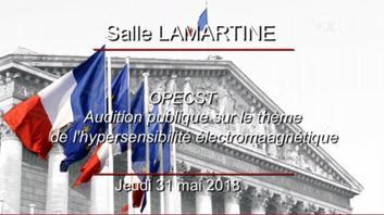Audition publique sur le thème de l'hypersensibilité électromagnétique