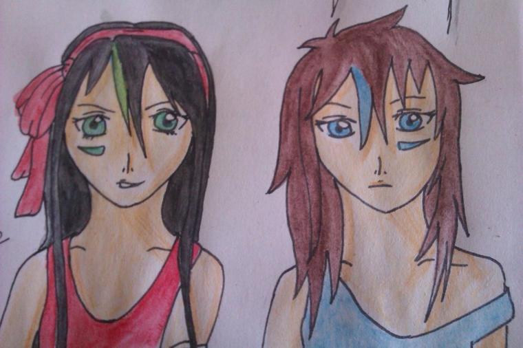 Les jumelles Shiba