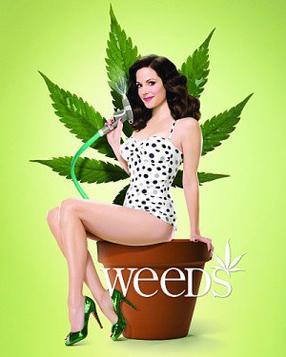 Série - Weeds