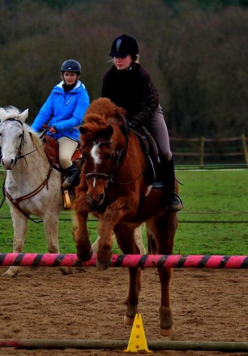 """"""" Quelque soit l'obstacle, jette ton coeur par-dessus et ton cheval ira le chercher."""""""