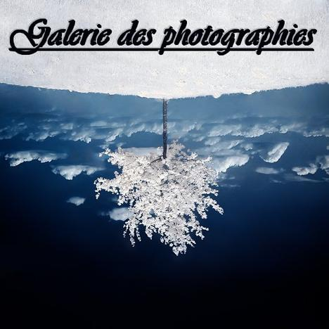 Galerie des photoraphies