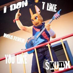 Musique (The skunx)