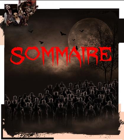 Sommaire (Halloween 2011 Walibi belgium)