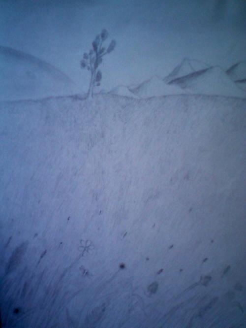 Prairie d'herbe