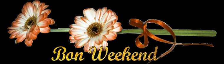 Résultats de recherche d'images pour «bon weekend png»