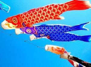 En ce moment au Japon nous célébrons le Kodomo no Hi