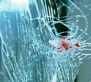 CHAPITRES 35- Rosa apprends la nouvelle de l'accident