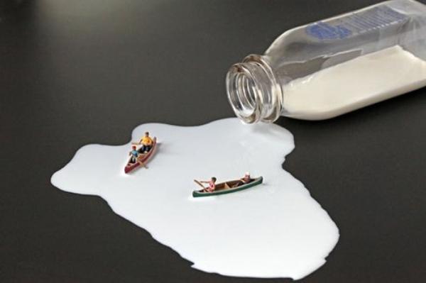 L'art du micro monde dans nos assiettes.