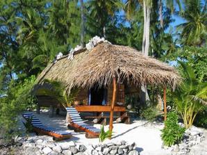 Tahiti au soleil , pas comme chez nous !! Une pensée pour ma Lucie qui entame sa 16 ème semaine  la-bas...