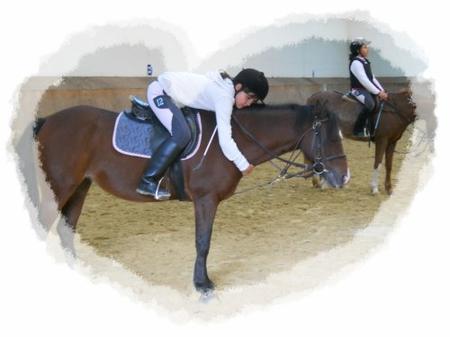 Cours d'équitation [du O6/1O au 27/1O]